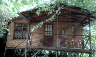 Albaricoque Cabins